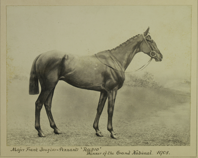P/445 - 1908 Grand National winner